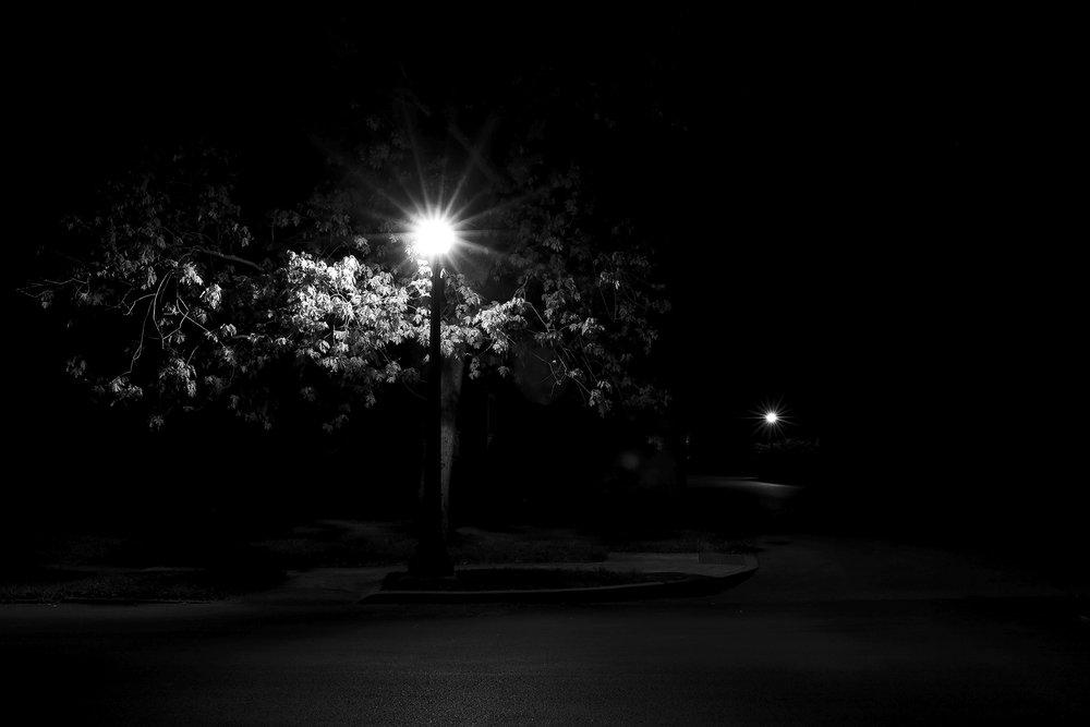 TreeLamp.JPG