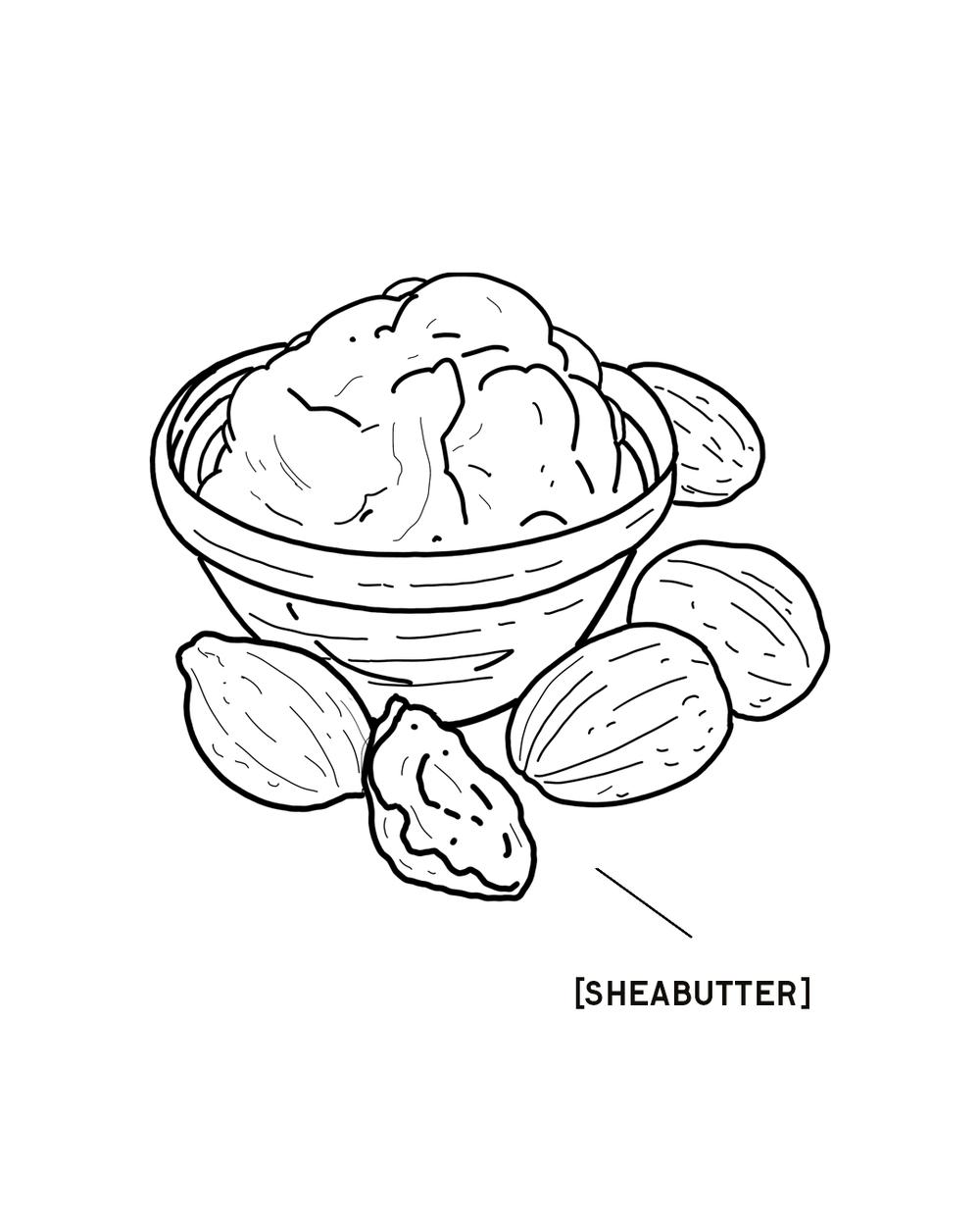 SHEABUTTER-1350X1080.png