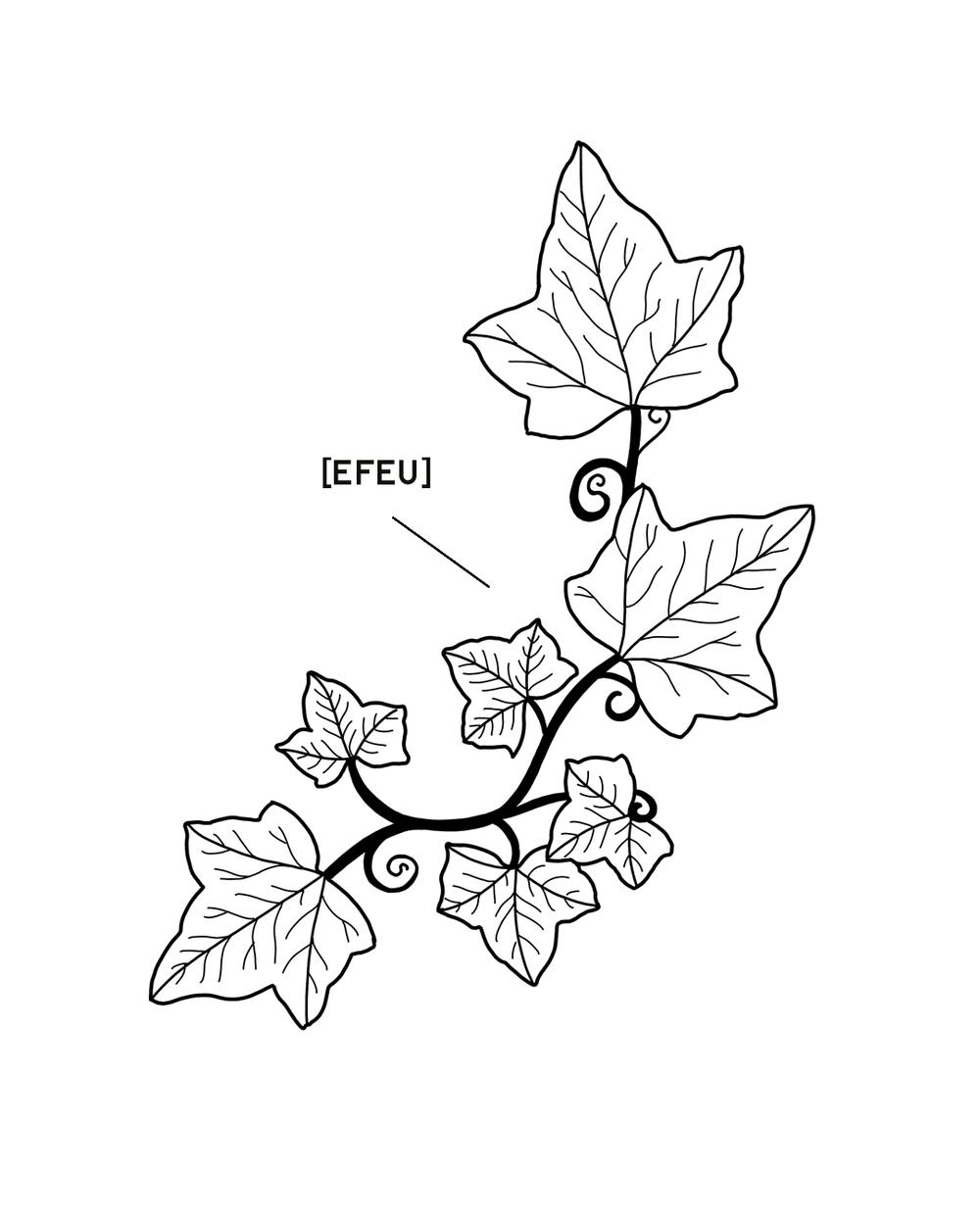 EFEU-1350X1080.png