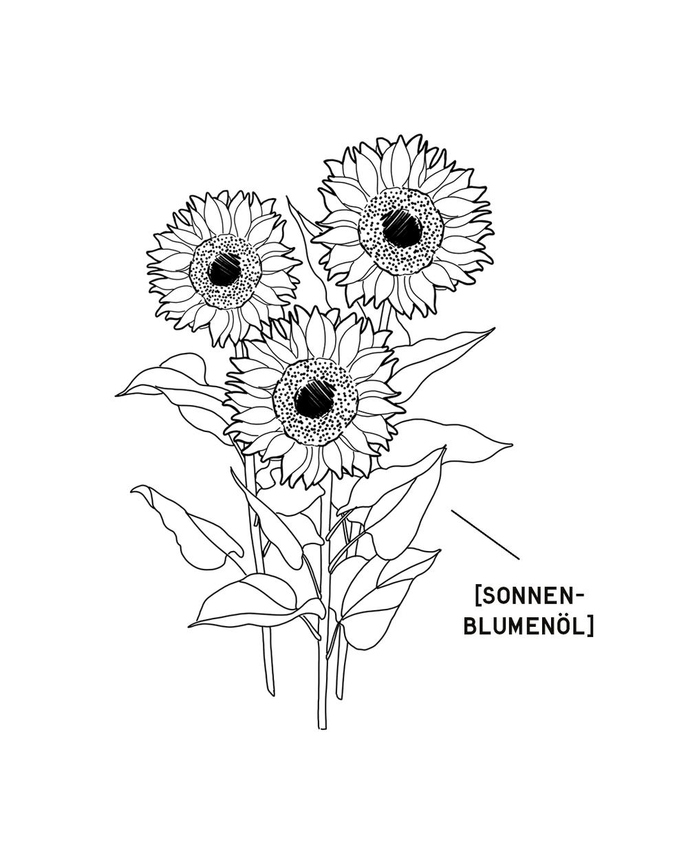 SONNENBLUMENOEL-1350X1080.png
