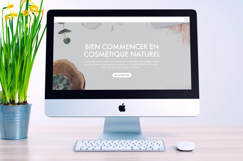 Vendre ses cosmétiques : Créer son DIP (dossier d'information de produit). créer et vendre ses produits cosmétiques