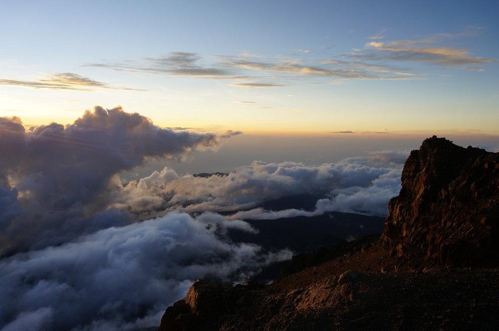 Kilimanjaro View.jpg