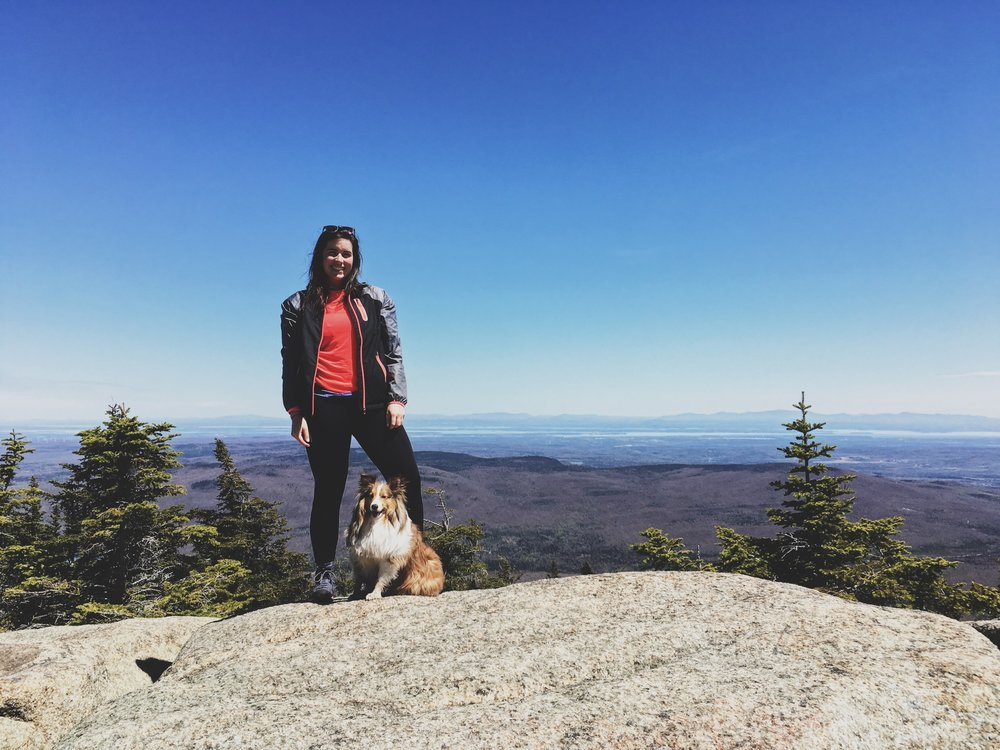 lyon-mountain-expedition-canine-randonnee-chien-newyork