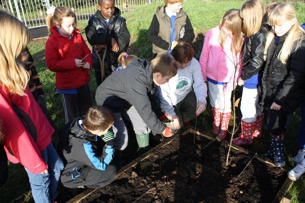 S3_4 Portway Juniors Tree Planting Dec 2011.jpg