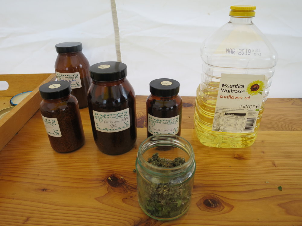 Herbs for Healing 5.JPG