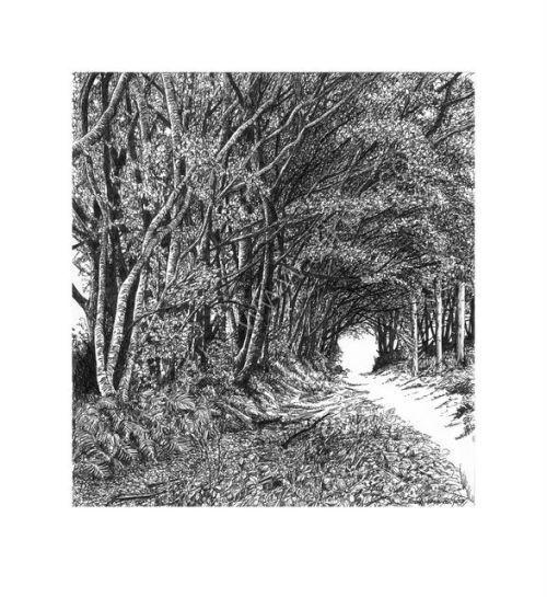 The Way Through the Woods_2.jpg