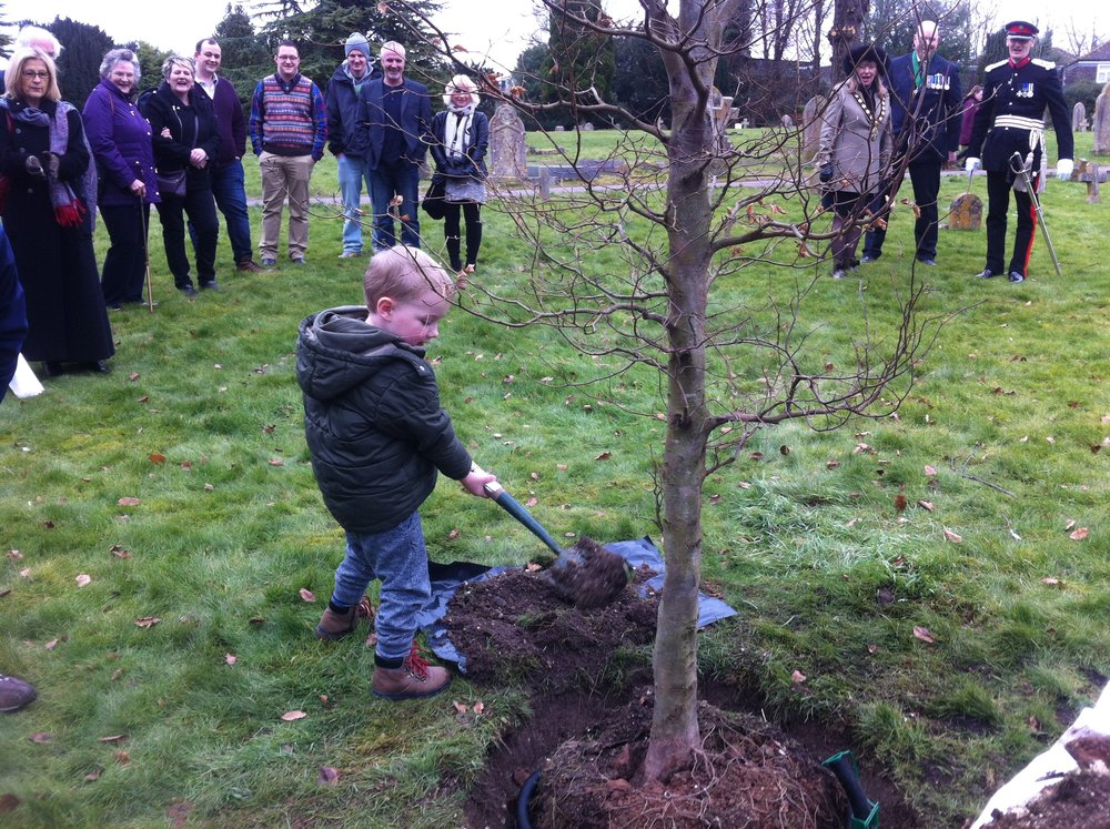 2015 Celebrating 2500 trees planted with Lions commemorative Beech in St Marys Church grounds.JPG