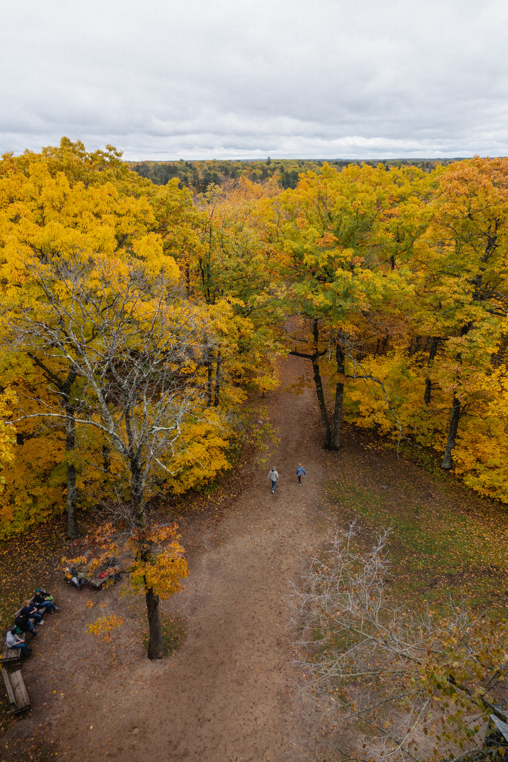 autumn at itasca biological station -