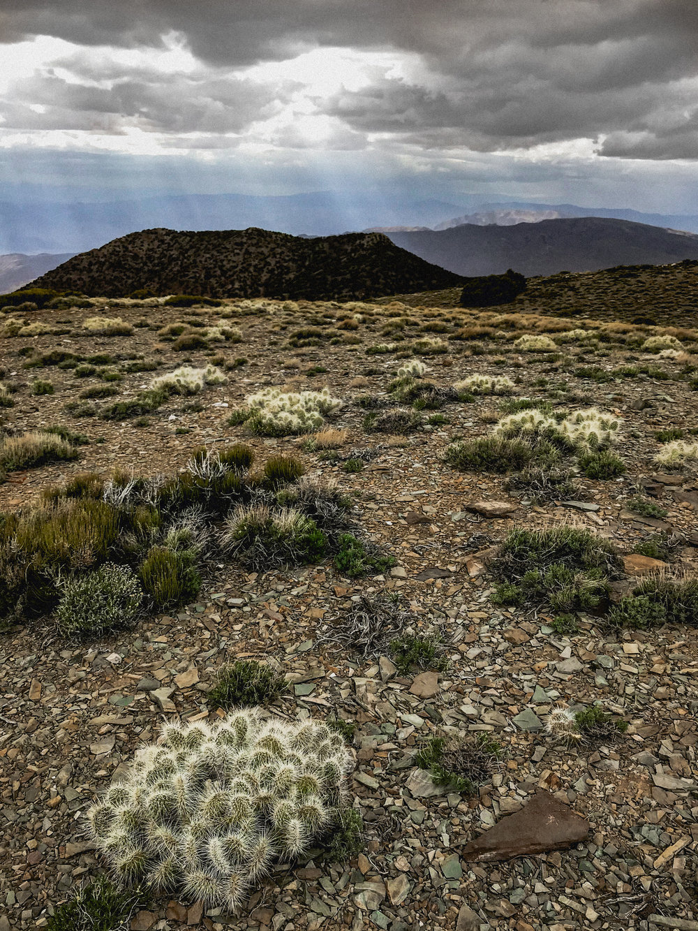 Death Valley in may 2018 -