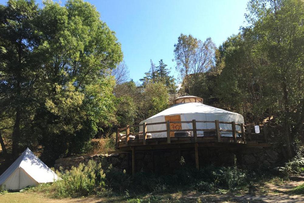 Medicinal_Plants_Retreat_Portugal_2019_Saskia_Schreiber_The_Sanctuary_8.jpg