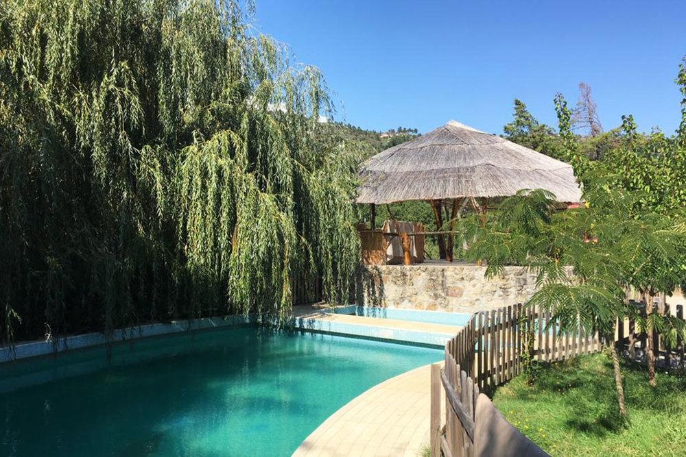 Medicinal_Plants_Retreat_Portugal_2019_Saskia_Schreiber_The_Sanctuary_11.jpg