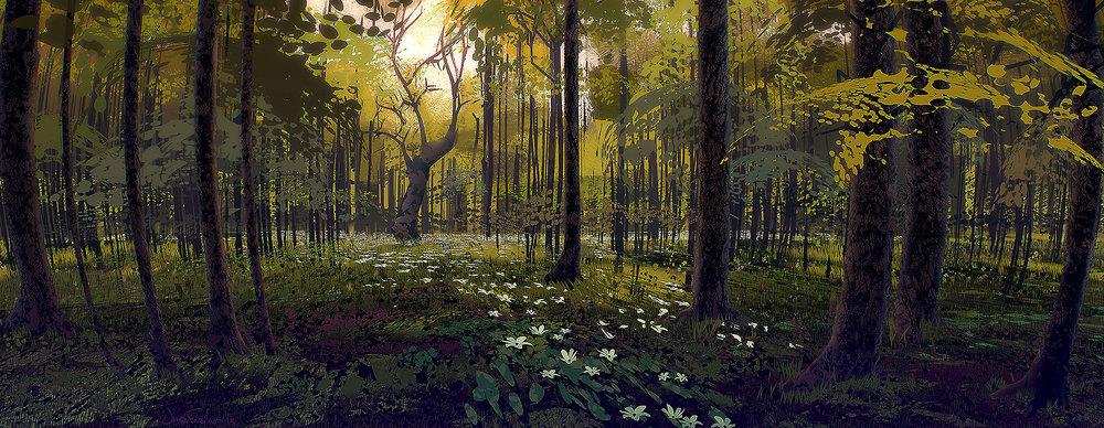 Forest_stuff_JosephFeinsilver_new.jpg