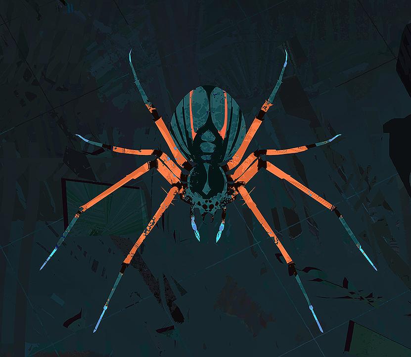Spider_ColorDesign_low.jpg