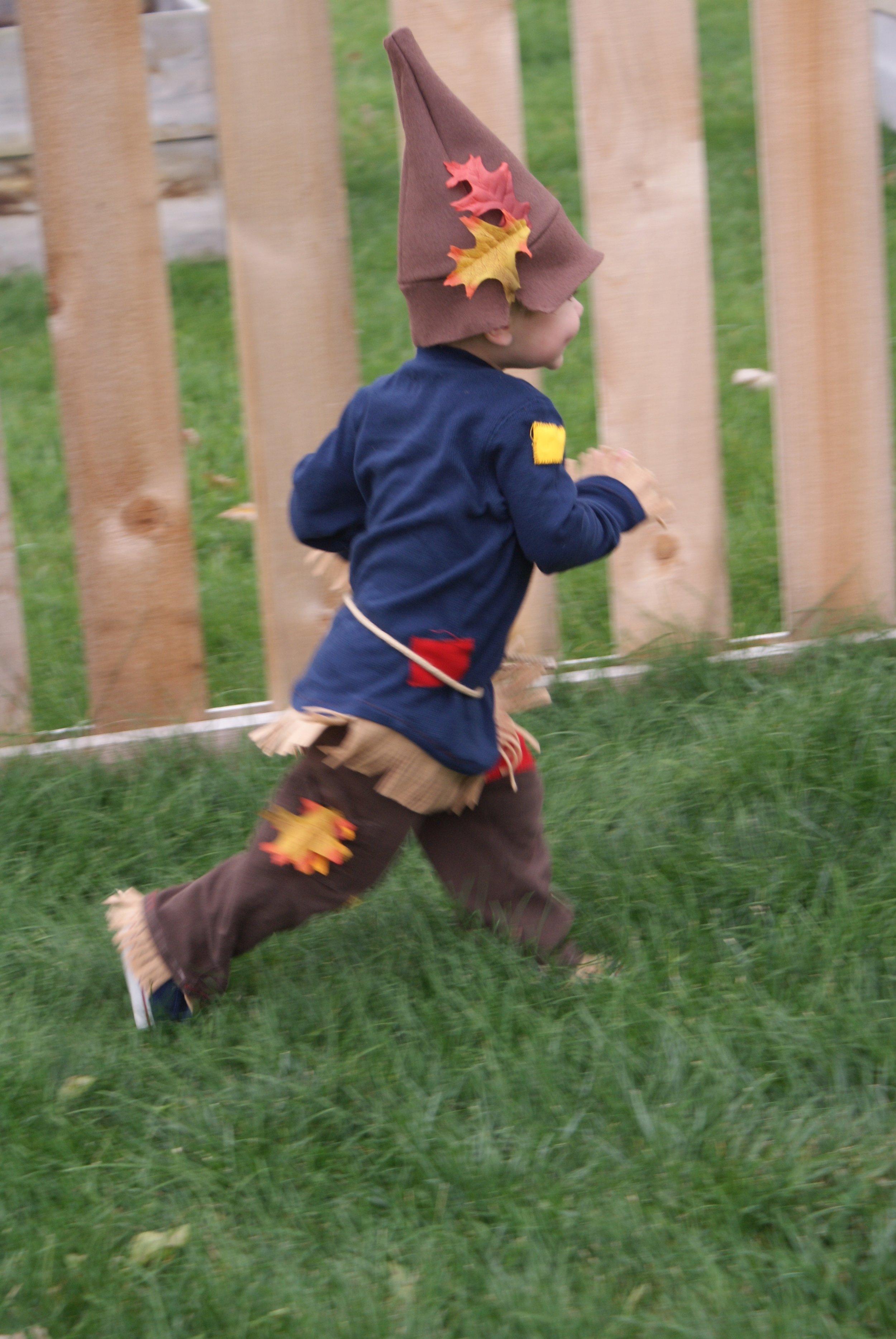 Scarecrow- 2014