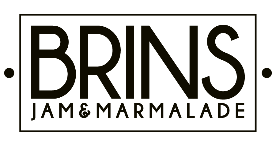 BRINS logo-01.png