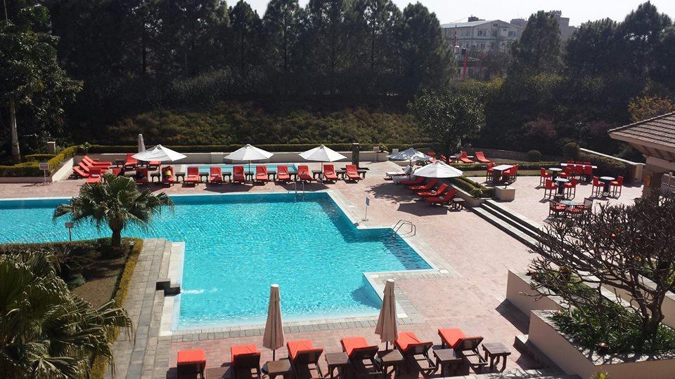 Hyatt poolside covers.jpg