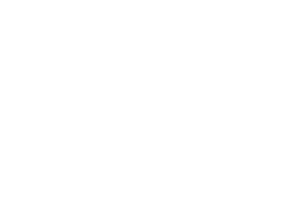 NOMINATED - Norwich Film Festival - BEST DOC (1).png