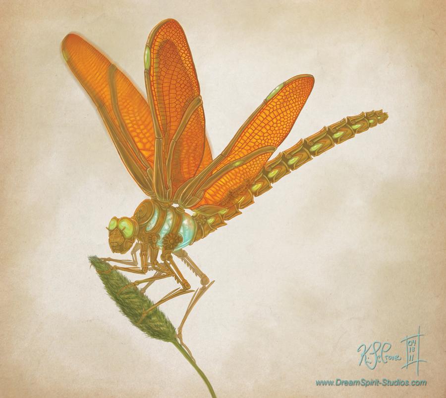 ClockworkDragonfly-09-RGB.jpg