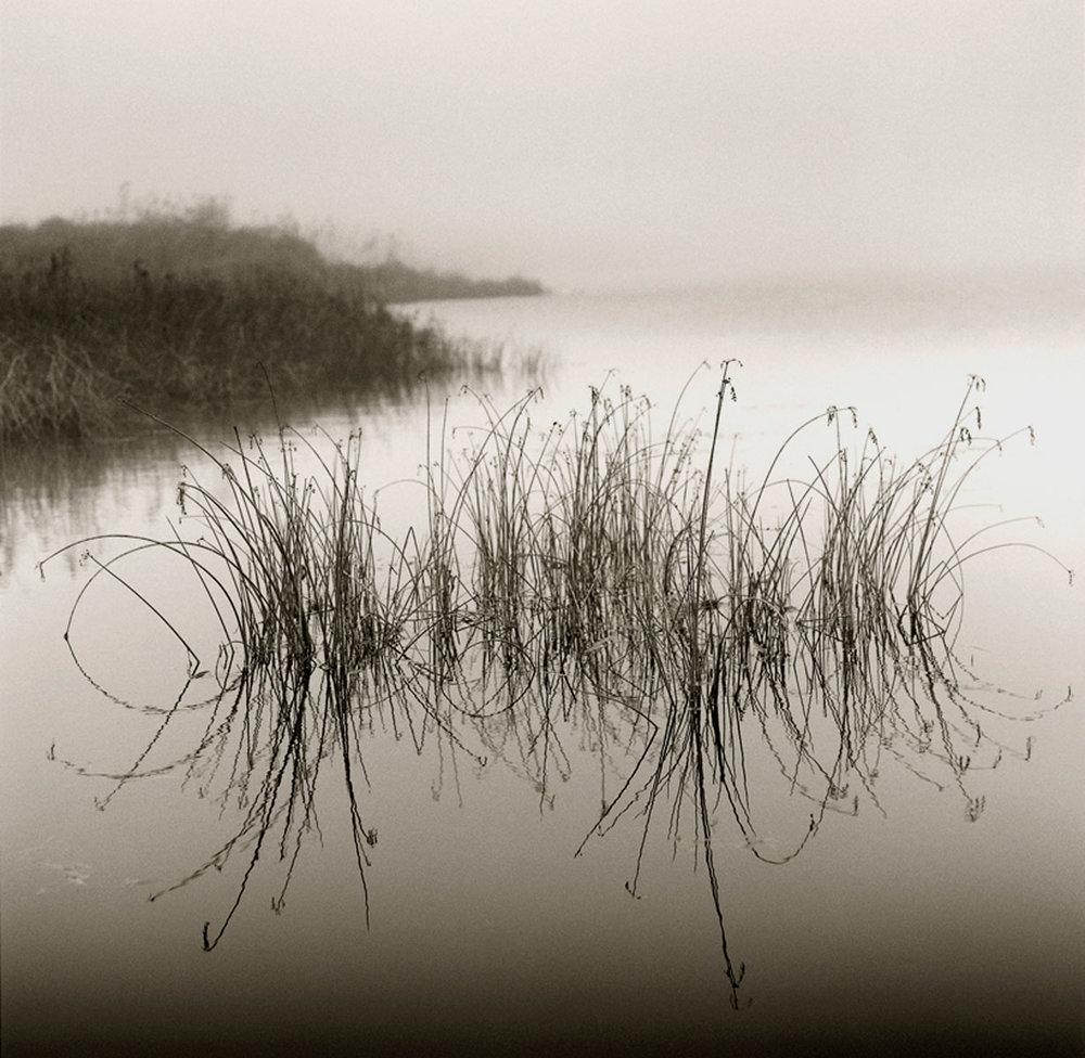 Reeds II