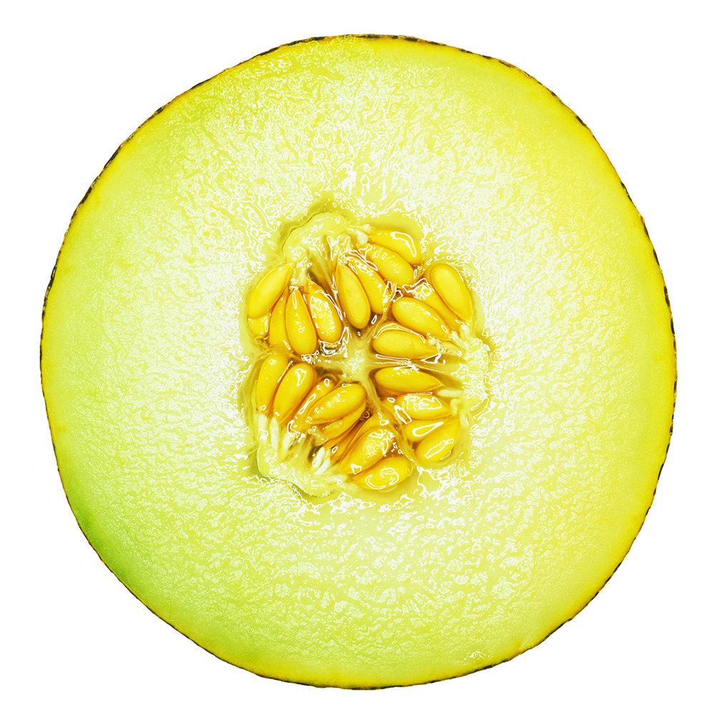 Galla Melon