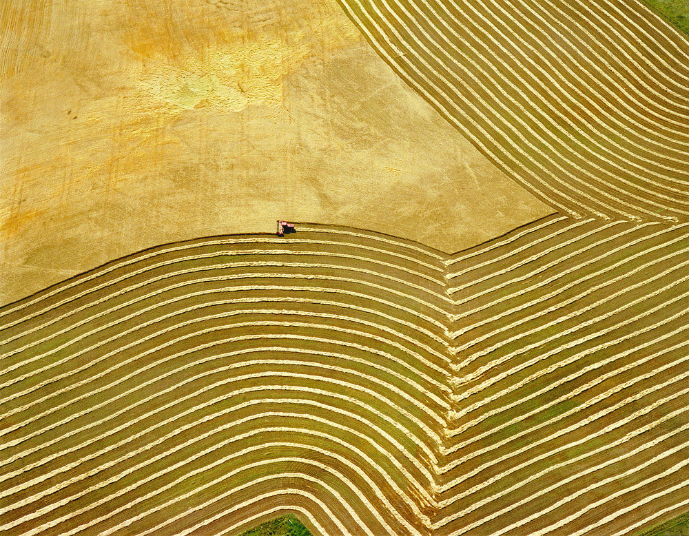 Wheat Field and Tractor II - near Yankton, SD, USA 2006