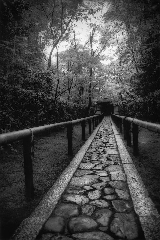 Kyoto Path