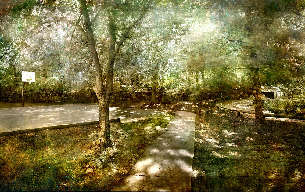 Del Ray Landscape, 48 x 76
