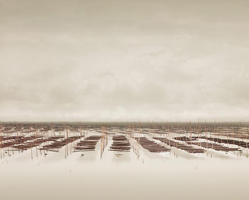 Seaweed Farm, South China Sea, China, 2011