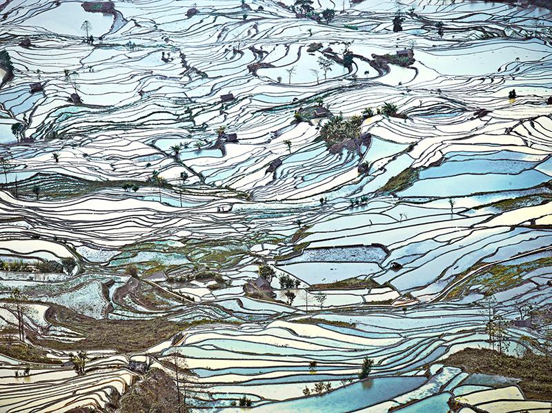 Rice Terraces, (Laohuzui II), Yunnan, China, 2013