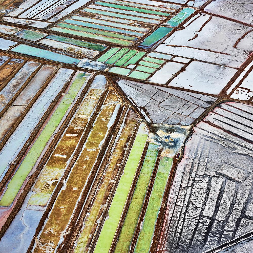 Saltern Study 2, Near Sea of Cortez, Mexico, 2016