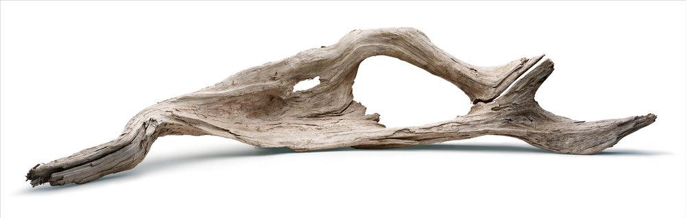 Driftwood I