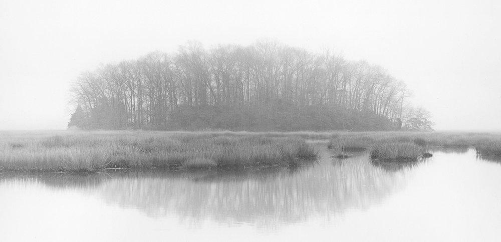 Sean Kernen -  Tree Island, Guilford