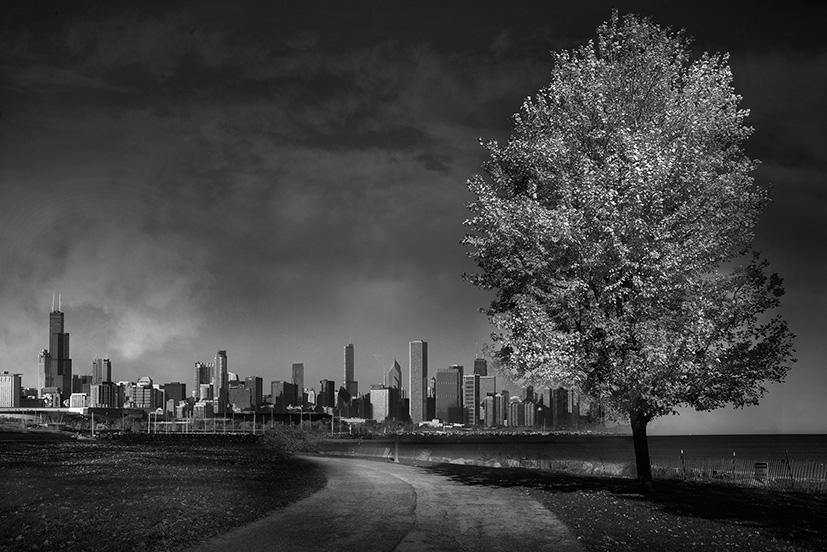 Jean Michel Berts -  Chicago 16