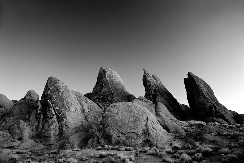 Stone Fins
