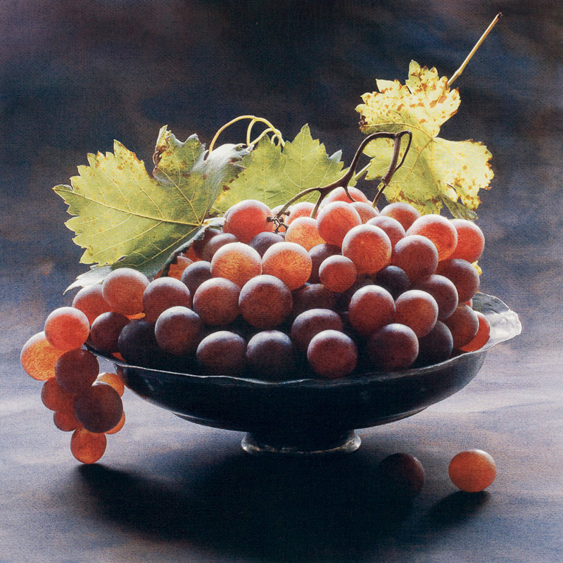 Grape Harvest II