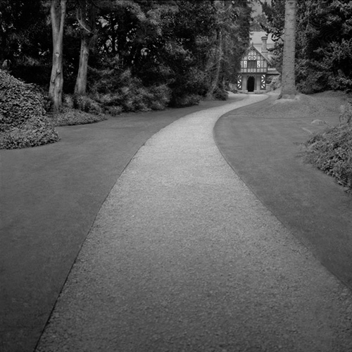The Limewalk, Biddulph Grange.jpg