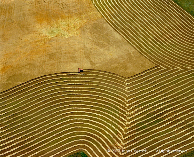 Wheatfield and Tractor 2 near Yankton, SD, USA.jpg