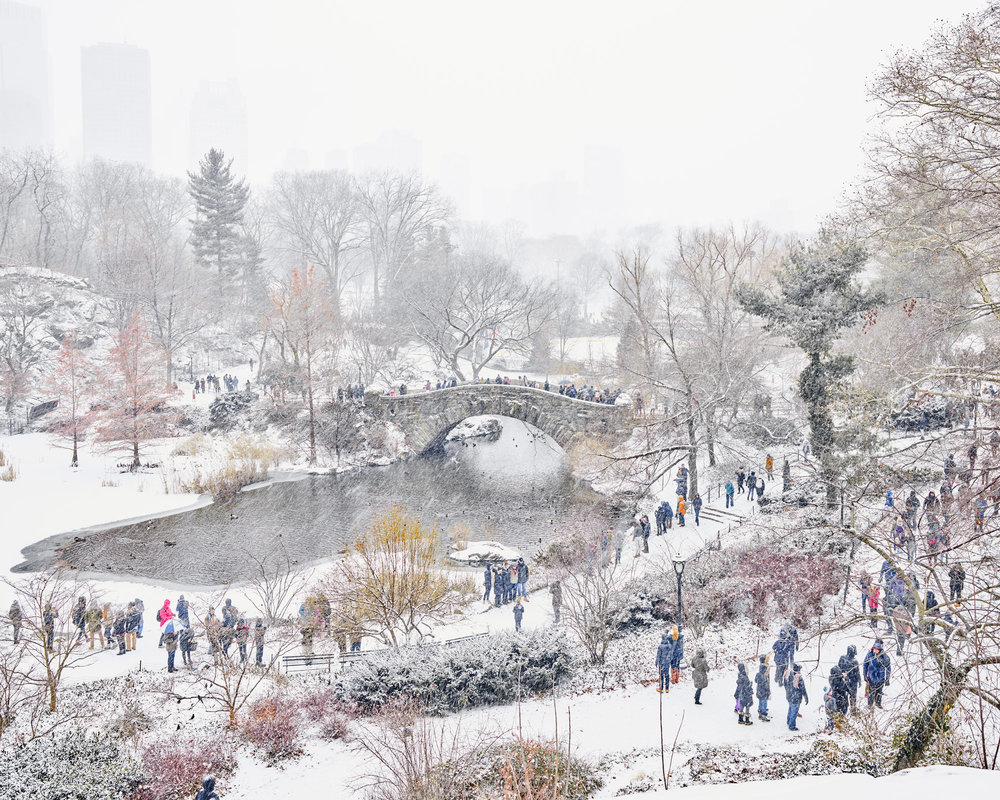 New Year's Snow, Central Park, NYC 2017