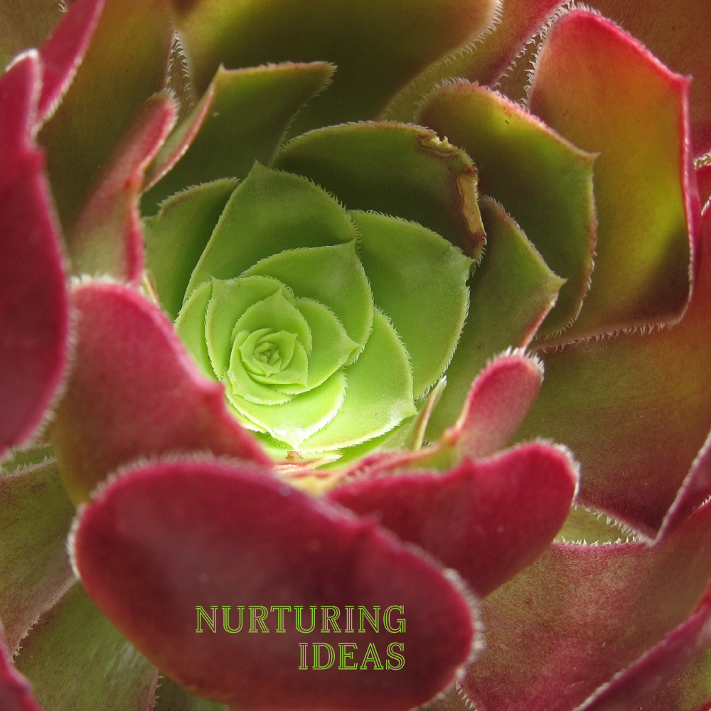 Nurturing.jpg