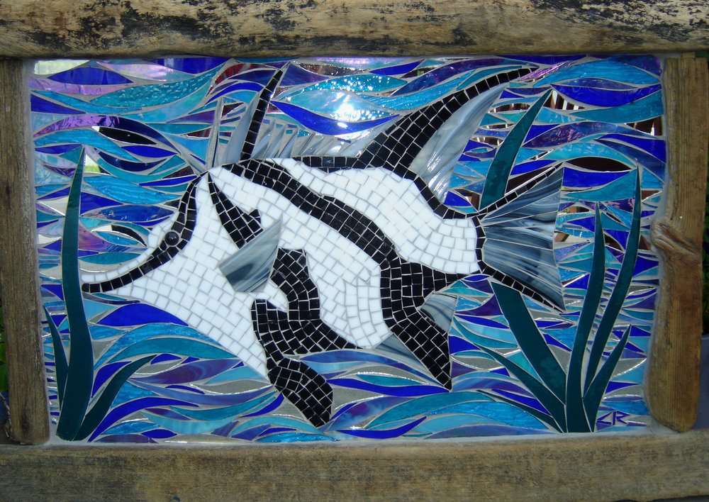 Boarfish (Stained Glass, Mirror)