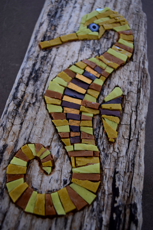 Seahorse Detail