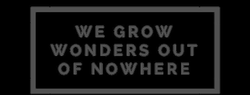 We Grow Wonders grey 515151.png