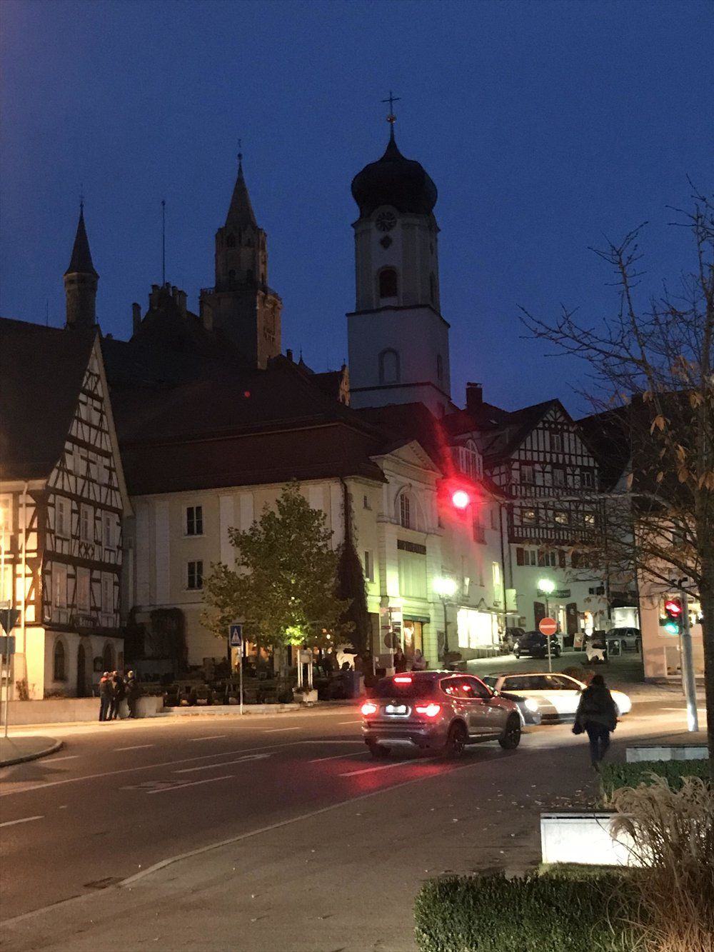 The small town of Sigmaringen, on the Danube, surrounded by hills and forests.