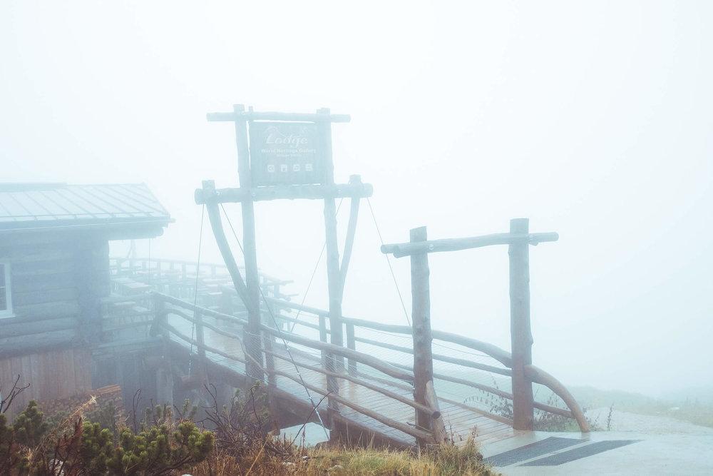 Lodge am Krippenstein . Altitude: 2063m