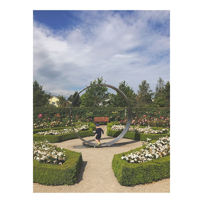 Delta Sensory Gardens in Carlow town