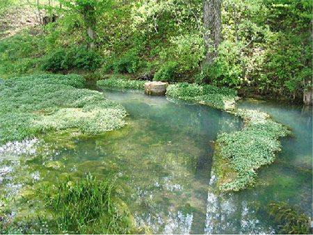 A large karst spring in south central Indiana. HGI identified the recharge area of the spring through dye tracing tests.