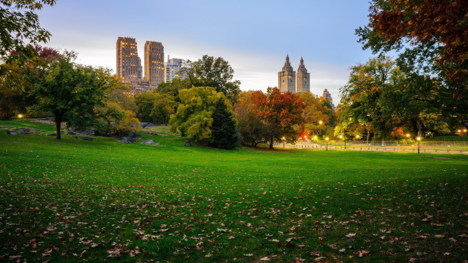 view_from_central_park_ny_4k.jpg
