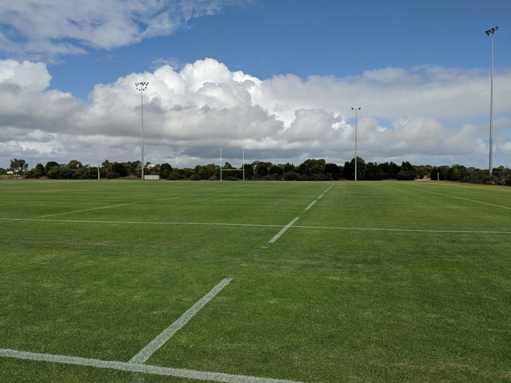 Rugby dashed lines in white line marking paint