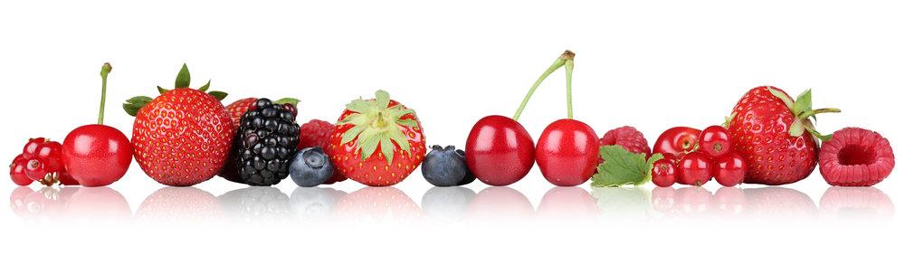 berrieslinear.jpeg