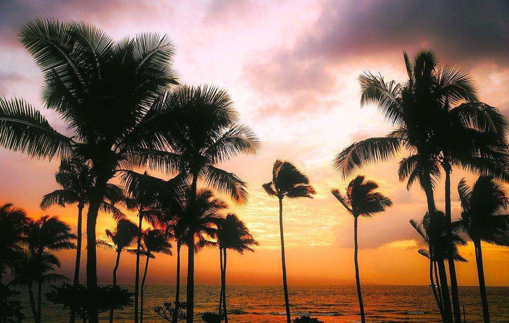 hawaii-1945486_1920.jpg